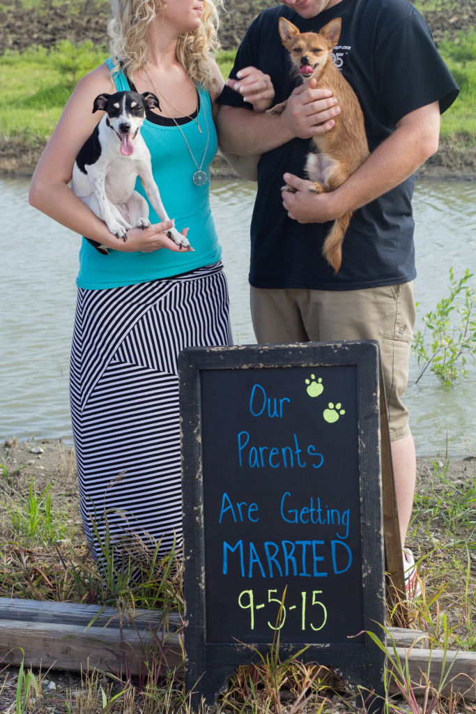 engagment. dogs. sign. water. turquoise. St Joseph. Missouri. stripe skirt.