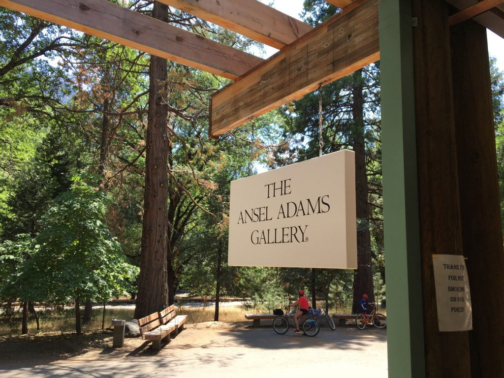California, vacation, Yosemite, national park, mountains, ansel adams, redwoods, cars, holiday weekend, packed, fun, adventure