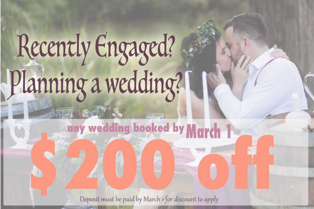 wedding discount engaged